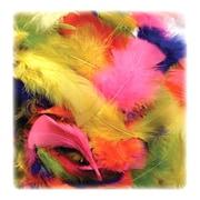 Chenille Kraft Feathers