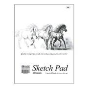 Bazic Premium Sketch Pad (Set of 48); 18'' x 12''