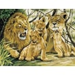 Reeves Paint By Numbers Large Pride of Lions Painting