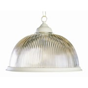 TransGlobe Lighting Back To Basics 1 Light Bowl Pendant; Antique White