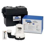 Basement Watchdog Computer Controlled A/C - D/C Battery Backup Sump Pump System