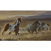 York Wallcoverings Portfolio II Desert Horse, Sage Plains Grasses and Foothill Mountains Wall Mural
