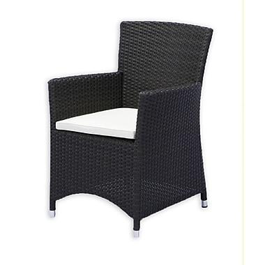Source Outdoor St. Tropez Dining Arm Chair w/ Cushion; Sunbrella Antique Beige