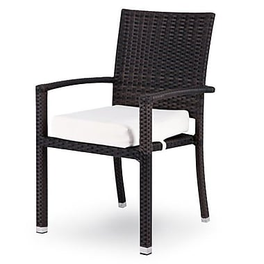 Source Outdoor Zen Dining Arm Chair w/ Cushion; Tuscan
