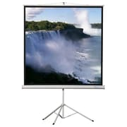 Buhl Matte White Portable Projector Screen; 70'' H x 70'' W