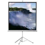 Buhl Matte White Portable Projector Screen; 70'' H x 70'' W