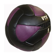 VTX by Troy Barbell VTX Leather Wall Ball; 6 lbs