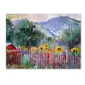 Trademark Fine Art 35in. x 47in. Wooden Frame Foothills