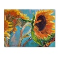 Trademark Fine Art 47in. x 35in. Canvas Sun 11