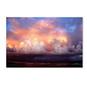 "Trademark Fine Art 16"" x 24"" Canvas, Wood Gallery-Wrapped Canvas Art"