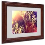 Trademark Fine Art 11 x 14 Painting Light, Wood Frame