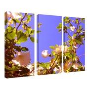 "Trademark Fine Art 14"" x 32"" Wooden Frame Gallery-Wrapped Canvas Art"