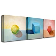 "Trademark Fine Art 24"" x 24"" Canvas/MDF Gallery Wrapped Canvas Art"