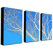 "Trademark Fine Art 18"" x 32"" Wooden Frame Gallery Wrapped Art"