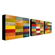"Trademark Fine Art 24"" x 32"" Wooden Frame Gallery-Wrapped Canvas Art"