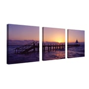 "Trademark Fine Art 14"" x 14"" Wood Gallery Wrapped Canvas Art"