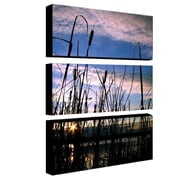 "Trademark Fine Art 10"" x 24"" Canvas/Wood Gallery Wrapped Canvas Art"