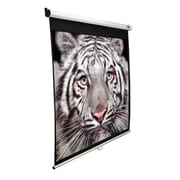 Elite Screens Manual Series MaxWhite 120'' Projection Screen
