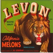 iCanvas Levon California Melons Vintage Crate Label Canvas Wall Art; 18'' H x 18'' W x 1.5'' D