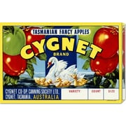 Global Gallery 'Cygnet Tasmanian Fancy Apples' by Retrolabel Vintage Advertisement on Wrapped Canvas