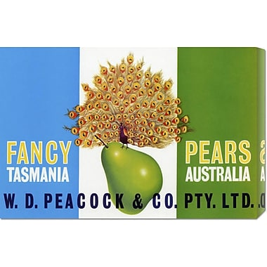 Global Gallery 'Peacock Pears' by Retrolabel Vintage Advertisement on Wrapped Canvas