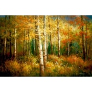 North American Art 'High Country Colors' by Robert Barnes Painting Print on Wrapped Canvas