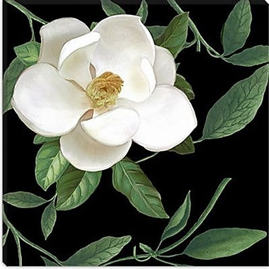 iCanvas ''Sweet Magnolias II'' by Color Bakery Painting Print on Wrapped Canvas