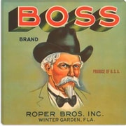 iCanvas Boss Brand Crate Label Vintage Advertisement on Canvas; 18'' H x 18'' W x 1.5'' D
