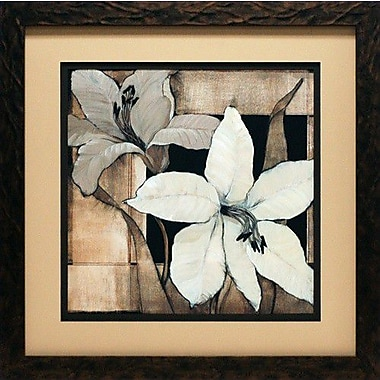 North American Art 'Dramatic Lily Grid II' by Tim O'Toole Framed Painting Print