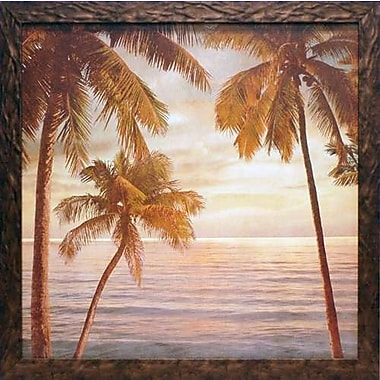 North American Art 'Palms on the Water II' by John Seba Framed Photographic Print