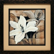 North American Art 'Dramatic Lily Grid I' by Tim O'Toole Framed Graphic Art