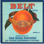 iCanvas Belt Brand Oranges Vintage Crate Label Canvas Wall Art; 12'' H x 12'' W x 0.75'' D