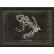 The Artwork Factory Frog Framed Graphic Art; Black