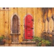 Gizaun Art Red Door Photographic Print; 22.5 x 16