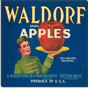 iCanvas Waldorf Apples Vintage Crate Label Canvas Wall Art; 37'' H x 37'' W x 0.75'' D