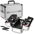 Seya Professional Cosmetic Train Case; Silver