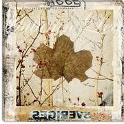 iCanvas ''Autumn Leaf'' by Luz Graphics Graphic Art on Canvas; 18'' H x 18'' W x 1.5'' D