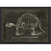 The Artwork Factory Turtle Framed Graphic Art; Black