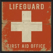 The Artwork Factory Lifeguard First Aid Office Framed Graphic Art