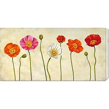 Global Gallery 'Coquelicots' by Cynthia Ann Painting Print on Wrapped Canvas