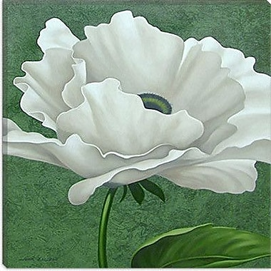 iCanvas ''White Poppy'' by John Zaccheo Painting Print on Wrapped Canvas; 26'' H x 26'' W x 0.75'' D
