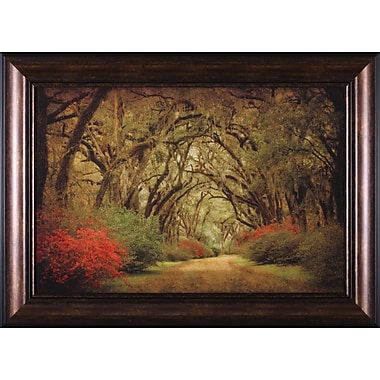 Art Effects Road Lined w/ Oaks and Flowers by William Guion Framed Painting Print