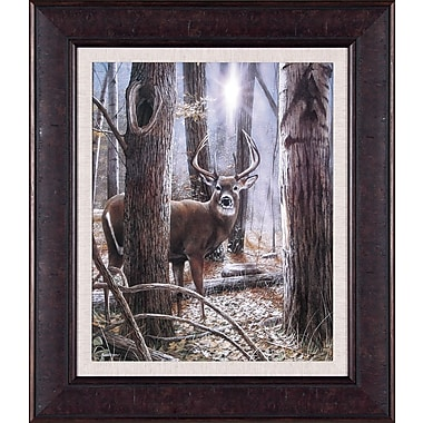 Art Effects Glimpse of Power by Kevin Daniel Framed Graphic Art
