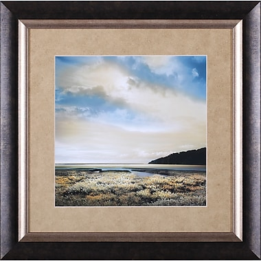 Art Effects Three Days Gone Petite by William Vanscoy Framed Photographic Print