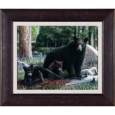 Art Effects New Discoveries by Kevin Daniel Framed Photographic Print; 24'' x 28''