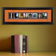 JDS Personalized Gifts Personalized Gift College Campus Framed Memorabilia; Illinois
