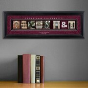 JDS Personalized Gifts Personalized Gift College Campus Framed Memorabilia; Texas A&M