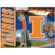 Holland Bar Stool NCAA Graphic Art on Canvas; Illinois