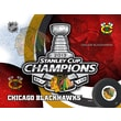 Holland Bar Stool NHL Printed Canvas; Chicago Blackhawks - Stanley Cup 2013