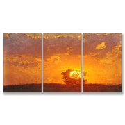 Stupell Industries Home D cor Farewell My Friend 3 Piece Painting Print Set